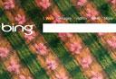 בינג, צילום מסך: Bing