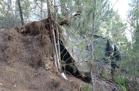 מצוקת הדיור: בנה בית באמצע יער ירושלים