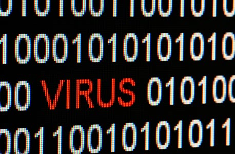 Computer virus (illustration). Photo: Shutterstock