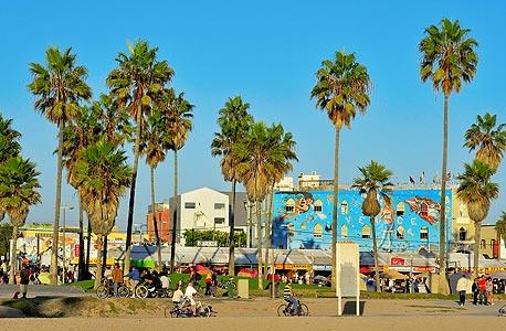 וניס ביץ', קליפורניה