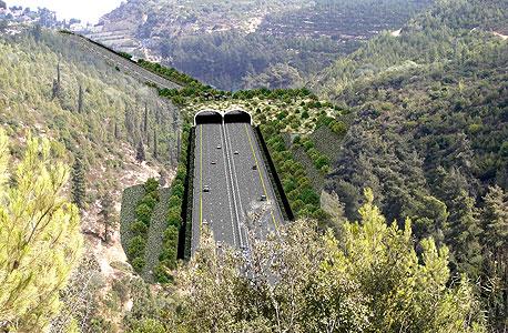 ניתן לראות את הגשר האקולוגי שיחצה את הכביש החדש