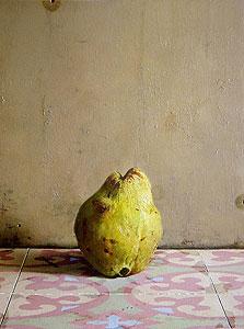 """""""חבוש"""", 2012, שמן על עץ, 34.2x32.5 ס""""מ, עבודה של ערן רשף"""