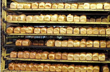 ה-ERP החדש מותאם בייחוד לתעשיית המזון, צילום: עמית שאבי