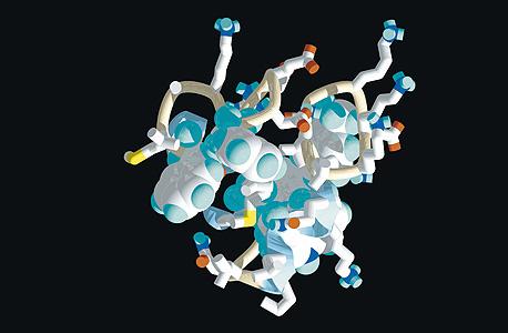 הדמיה של קיפול חלבון