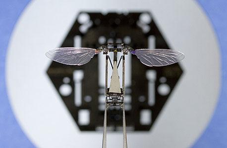 """הדבורה הרובוטית שמורכבת בתוך עשירית שנייה במנגנון """"פופ אפ"""" ממשטח אחד. יכולה לשמש לריגול, חילוץ והצלה"""