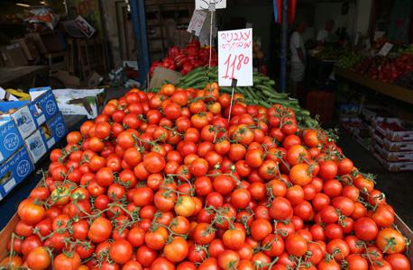 מחירי העגבניות עלו בינואר ב-14.7%