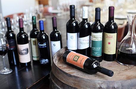 מימין: יינות של דאדה, כרמי עובדת, אבשלום, שושנה, שריגים (שוכב), מילס, נעמן, 3 גפנים, גוסטבו וג'ו הים האדום