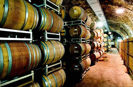 חביות יין יקבי כרמל