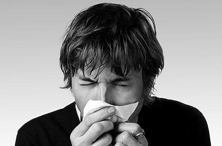 היכרות בחסות האלרגיה, צילום: שאטרסטוק