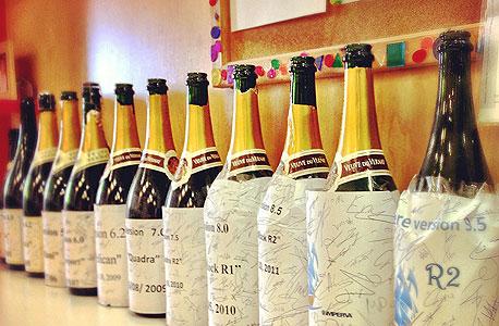 כל שמפניה מייצגת גרסת תוכנה