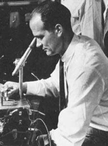 חלק פרס נובל, זכה לטינתם של רבים: וויליאם שוקלי