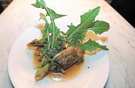 פנאי מסעדות גורמה חדשות בעולם דג בס acme 10.1.2013, צילום: בלומברג