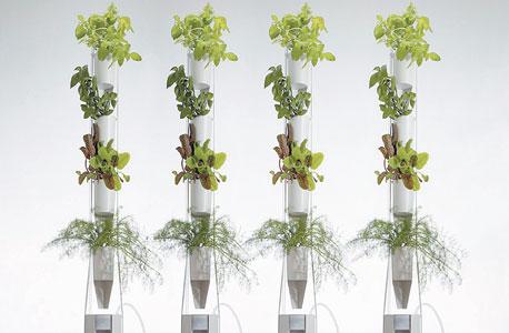"""מגדלי גידול של windowfarms. """"החברים בקהילת חקלאי החלון כבר מגדלים עגבניות, תותים, ירקות. חלקם מגדלים סלט ליום"""""""