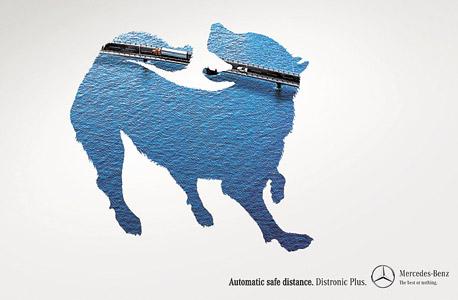 קמפיין עולמי: לכשכש בכלב