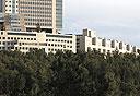 בית החולים הדסה בירושלים, צילום: מיקי נועם אלון