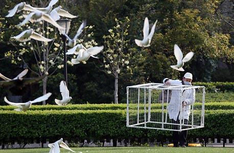 עובד בריאות סיני שם מלכודת יונים בפארק בשנגחאי