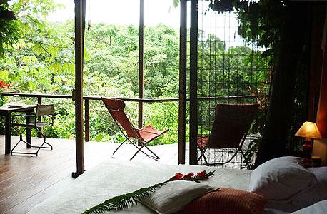 jungle tree house, קוסטה ריקה. 50 דולר ללילה