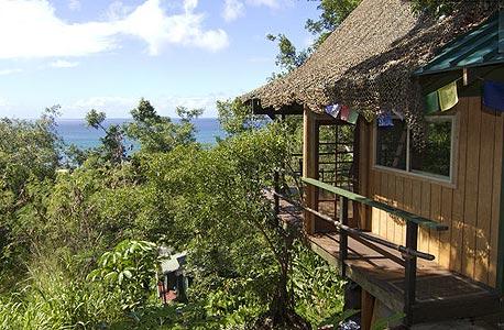 Temple Treehouse, הוואי. 180 דולר ללילה