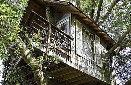 Treehouse Above San Francisco Bay, קליפורניה. 195 דולר  ללילה