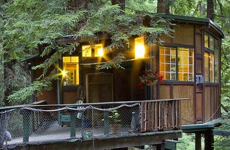 redwood tree house, קליפורניה. 125 דולר ללילה