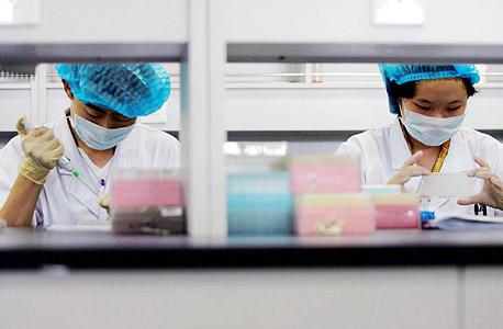 מעבדת גנטיקה, צילום: אי פי איי