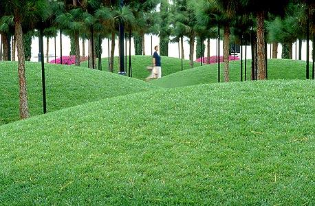 עבודה של שוורץ.מרינה לינאר פארק בסן דייגו, קליפורניה