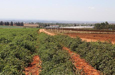 אדמות חקלאיות, מושב