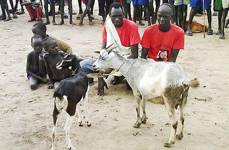 דרום סודן, צילום: בלומברג