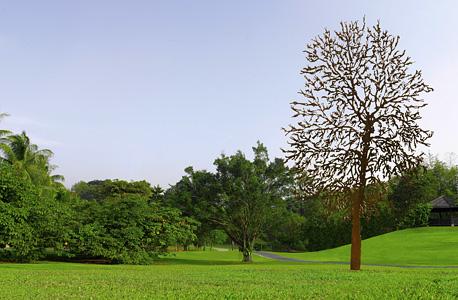 """עבודה של בן־דוד שהוצגה בגנים הבוטניים של סינגפור. """"התערוכה שם זכתה לסיקור תקשורתי ענק"""""""