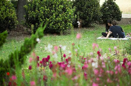 קיץ בגן הבוטני במקוה ישראל