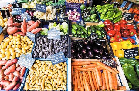 מסמנים לעצמנו: משרד הכלכלה בוחן סימון פירות וירקות ישראליים