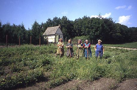 הונגריה פנסיה חקלאות פועלות