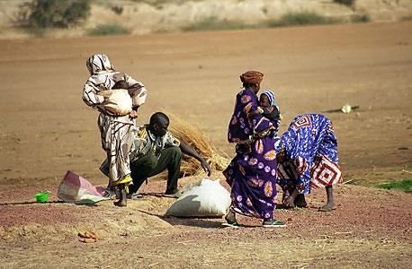 נשים בצ'אד. עיתון יומי ב-7 דולר