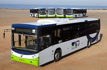 אוטובוס של קווים, צילום: רונן טופלברג
