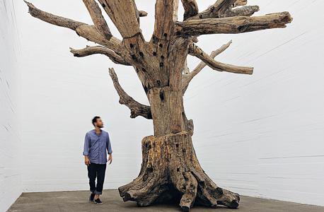 """עץ"""", עבודה של האמן איי ווייוויי, צילום: NOSHE"""