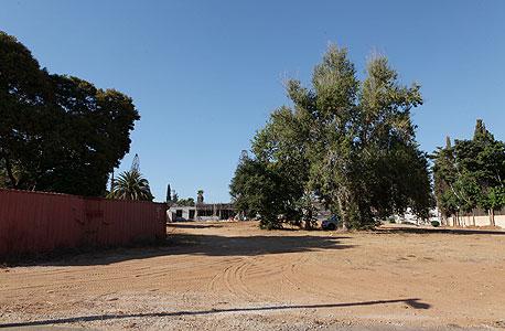 שטח המעוקל של אילן בן דב ב כפר שמריהו, צילום: עמית שעל