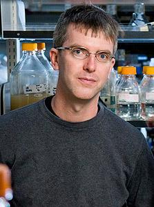 """אנדי. """"כרגע מדברים על חיידק מתוכנת שירפא תאים סרטניים"""""""