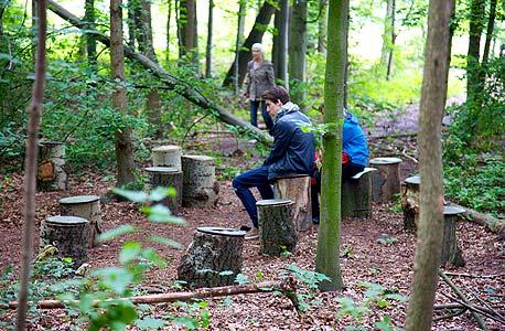 """""""יער"""". מיצב מ-2012. המבקרים יושבים על בולי עץ בלב יער אמיתי, ושומעים צלילים הבוקעים מ-30 רמקולים הפזורים בין העצים: סערה, ענפים נשברים, סוסים דוהרים, צעקות, יריות והפצצות - הכל נשמע כאילו קורה כאן ועכשיו, על אף שמדובר ביום נעים ושלו, צילום: Cardiff Miller"""