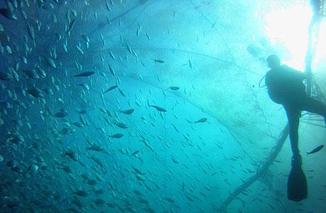 כלובי דגים מול חוף מכמורת, צילום: גידי שפרוט
