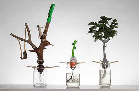 """העבודה """"Window Garden"""". חפצים הופכים לצמחים"""