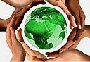עסקים יכלים לשמור על הסביבה וגם לחסוך, צילום: שאטרסטוק