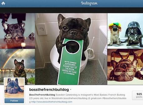 תחרות לסנאפצ'ט: אינסטגרם מוסיפה אפשרות לשליחת תמונות פרטיות