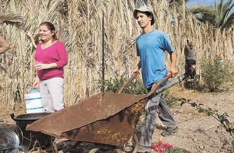 פעילות מתנדבים באתר בסוף שבוע שהוקדש לעבודות גינון
