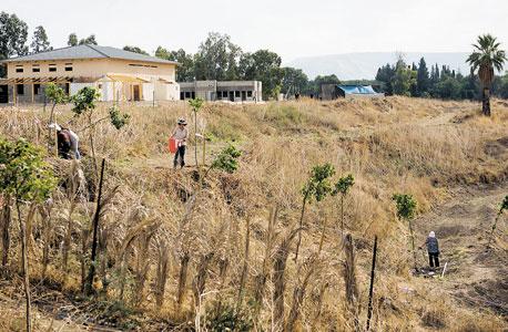 מודטים מגננים באתר דהאמה פאמודה