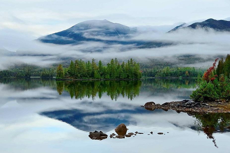 צילום:  Gary Paige ,the nature Conservancy