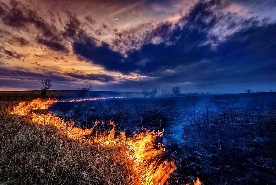 צילום:  Colin MacMillan ,the nature Conservancy