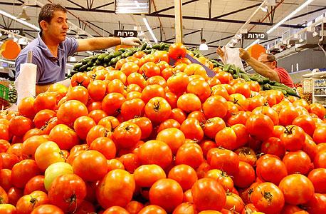 דוכן עגבניות בסופרמרקט, צילום: נמרוד גליקמן