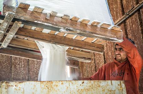 מייבשים את המלח. חאלק מקים כעת ביריחו בית אריזה מודרני שייצר מלח גורמה וישווק אותו באמירויות המפרץ הפרסי, צילום: ניר כפרי