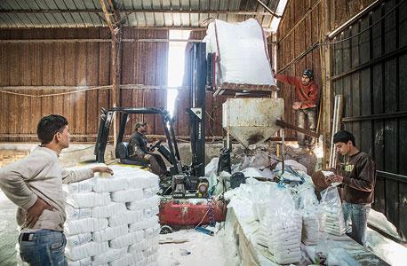 המלח הנקי נארז, צילום: ניר כפרי