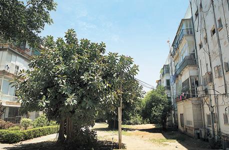 מתחם דפנה בתל אביב. 470 דירות ייהרסו ובמקומן ייבנו שישה מגדלים